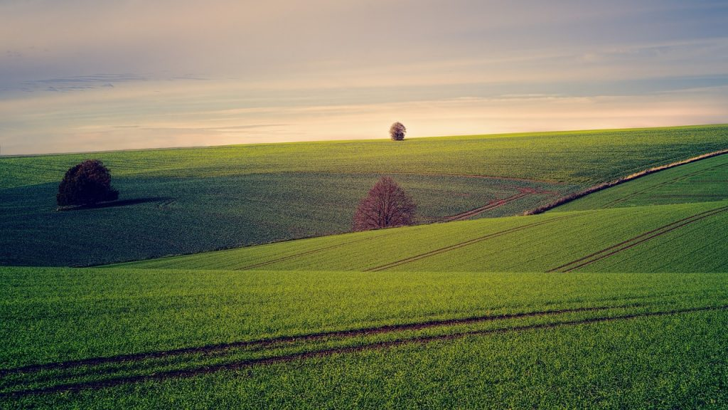 Southern Virginia Land Conservancy receives ,000 grant